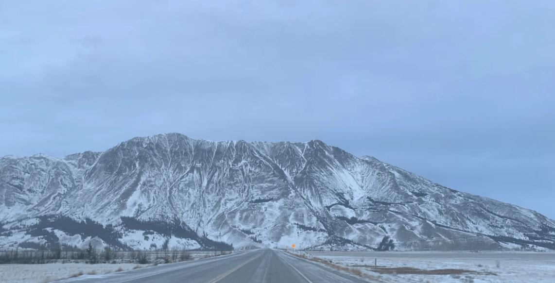 Environmental guardians keeping watch of KFN animals, land in Yukon